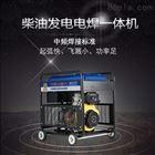 柴油300A发电电焊机国五标准