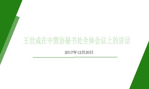 王世成在中塑协秘书处全体会议上的讲话(2017.12.20)